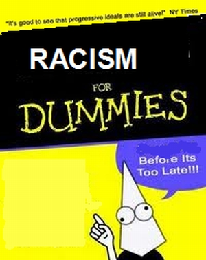 racismfordummies